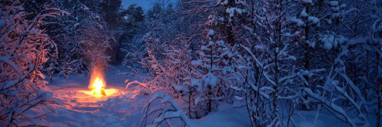 Copyright: arcticphotoworks / 123RF Stock Photo